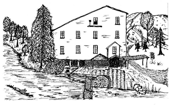 Yates Mill Pond