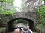 Acadia horseman_1_1