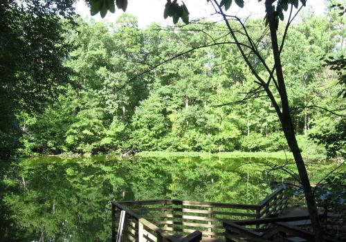pond at Brookhaven Park