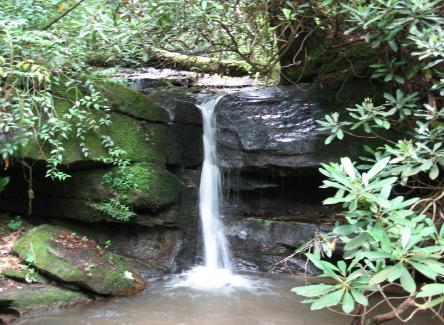 creek into Broad_1_1