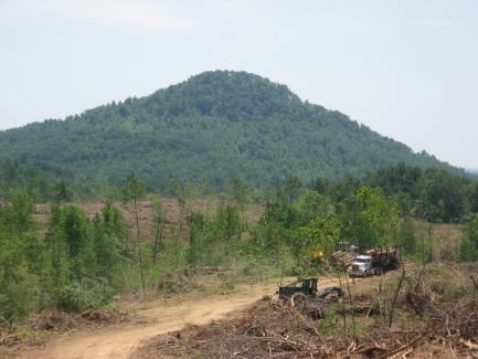 South Mtn development_1_1