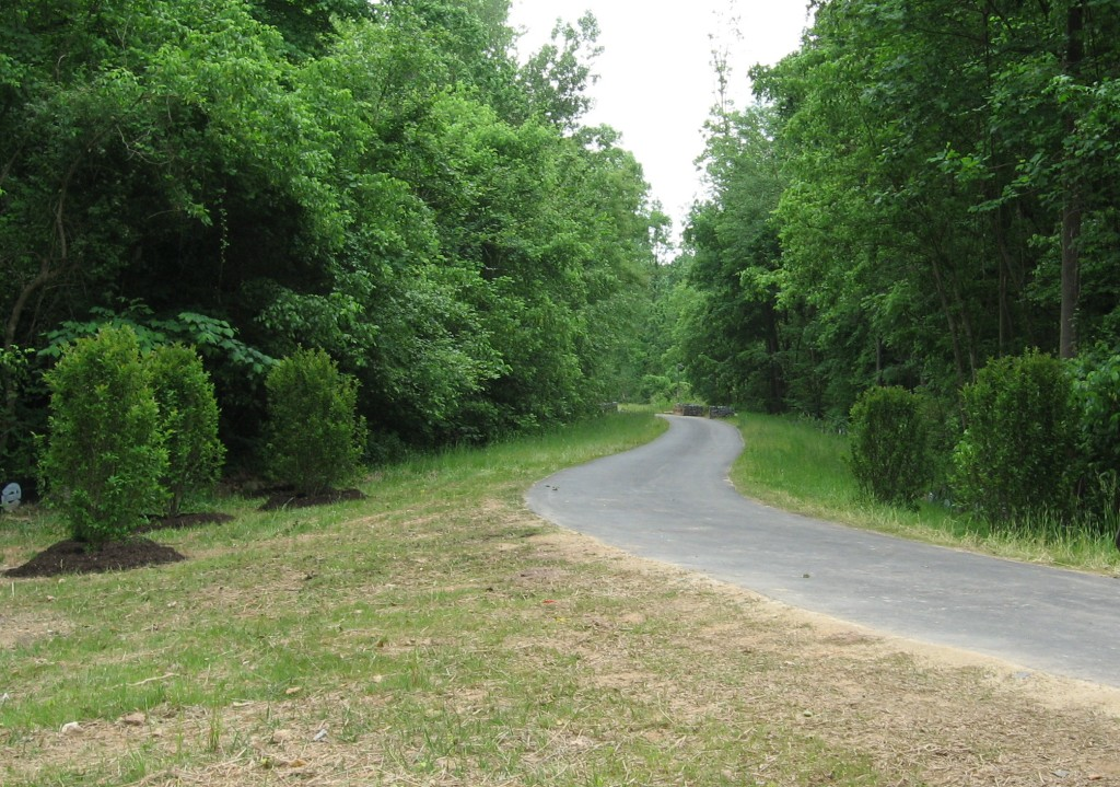 New House creek greenway seen from Blue Ridge Road