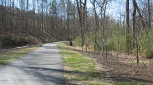 new plantings along House Creek Trail