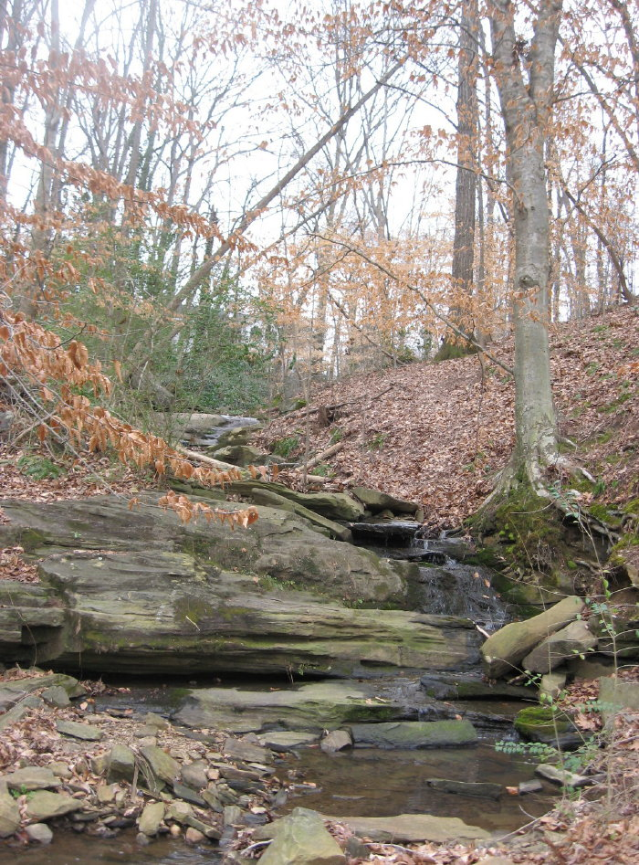 Ridge road tributary joins House Creek
