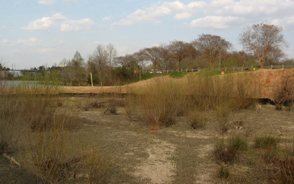 dry area behind sewer dam_1_1