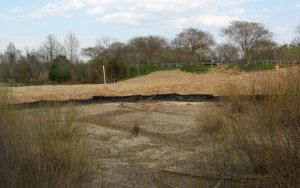 new dry area at Raleigh Swamp_1_1