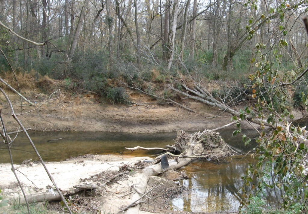 Crabtree Creek constricted at turn