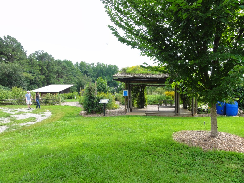 Prairie Ridge garden