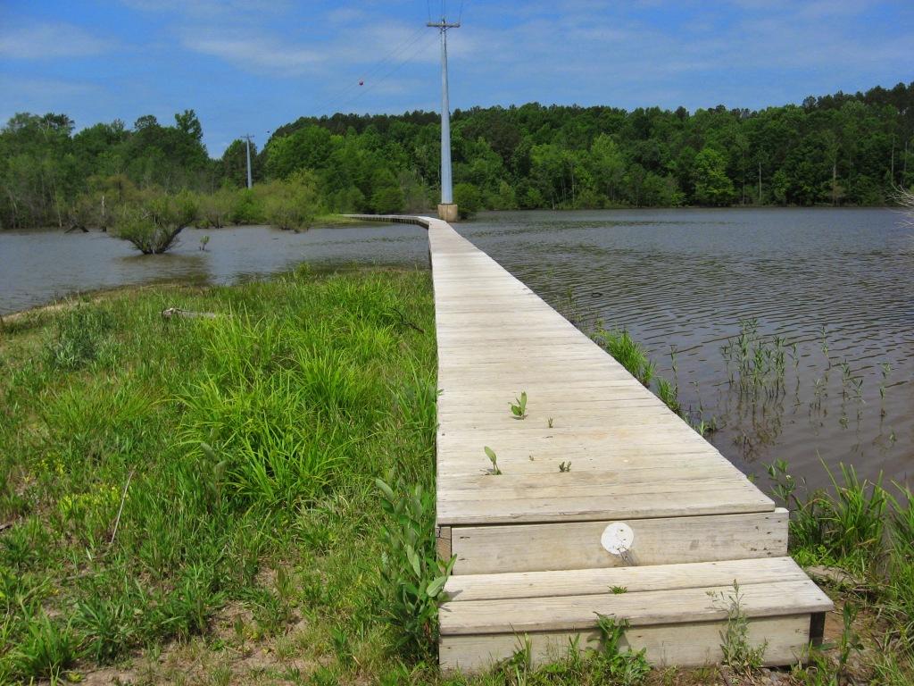 Lick Creek footbridge